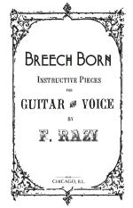 breech-cover